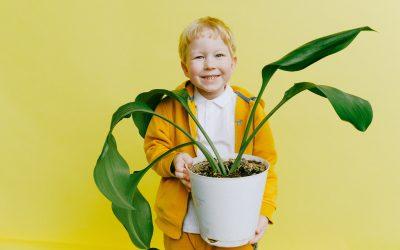 Child Cerebral Growth